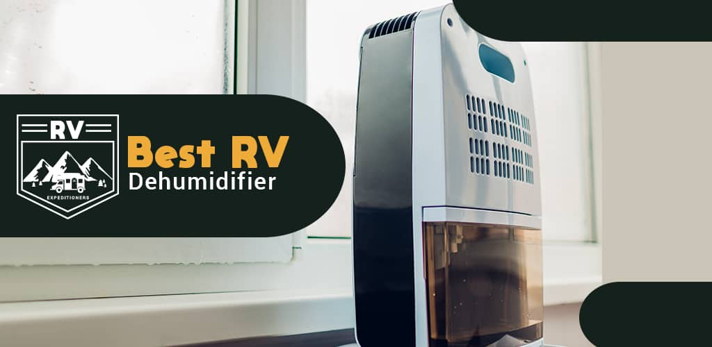 Best Dehumidifier For RV